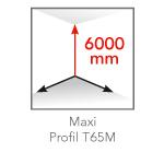 maxi-profil-t65m